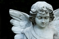 Pet Memorials and Cremation